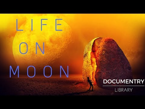 Life on moon is not possible ?? | Brief Documentary | Moon facts
