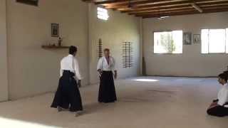 preview picture of video 'Aikido Bahía Blanca - Norberto Moretti Sensei 15/03/2014'