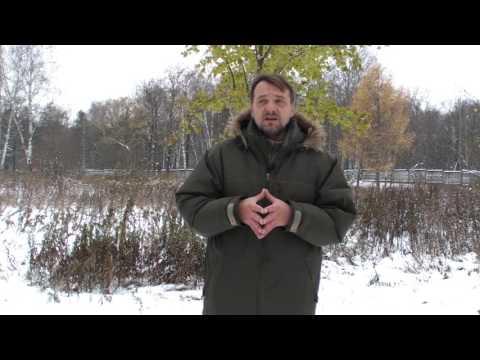 Как правильно принимать семена тыквы при лечении простатита видео