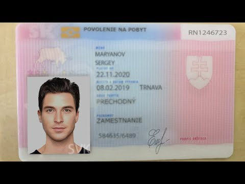 Полная инструкция по получению ВНЖ в Словакии