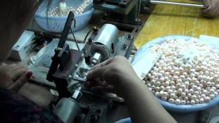 Freshwater Culture Pearls production