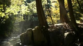 Franco Battiato - Le sacre sinfonie del tempo