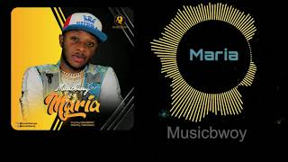 Musicbwoy Maria Official Audio