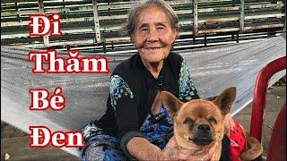 Bà Ngoại Lang Thang Thông Báo Ngày Thăm Bé Đen Bên Mái Ấm Thuy Lê | Bả Cụ Lang Thang Và Chú Chó Mù