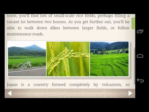 Video of Human Japanese Lite