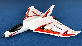 E-flite Delta Ray One RC Trainer Plane Unboxing, Spektrum DX6 Radio Setup, and Review
