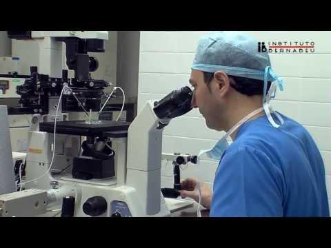 ICSI: Microinyección intracitoplasmática de espermatozoides