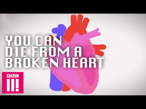 You Can Die Of A Broken Heart: Crazy Science