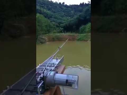La pesca in una baia shepalovo