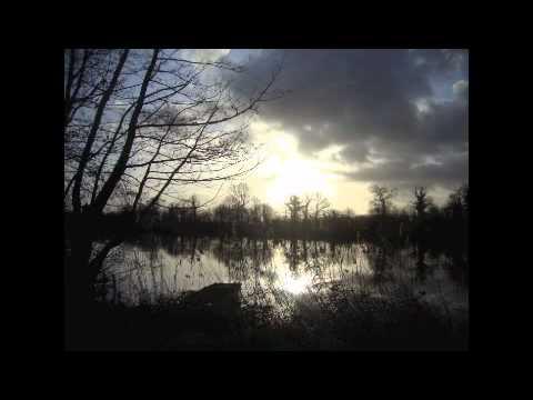 Franz Schubert - Winterreise - Güra/Berner 24. Der Leiermann