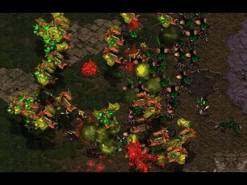 GOSU - s2.pRo (Z) v Gambler (Z) on Python - StarCraft  - Brood War REMASTERED