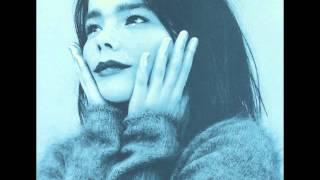 "Video thumbnail of ""Björk - I Remember You"""