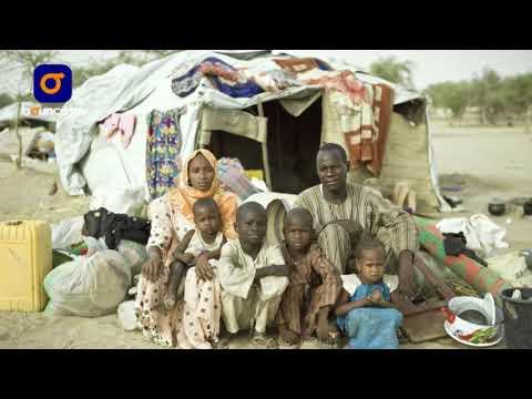 Boko Haram: The Untold Borno Stories