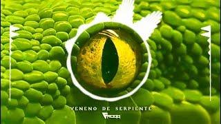 Frogg   Veneno De Serpiente (original Mix)