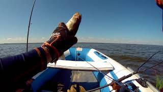 Рыбалка и отдых на рыбинском водохранилище дикарем