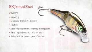 Rapala bx jointed shad 6