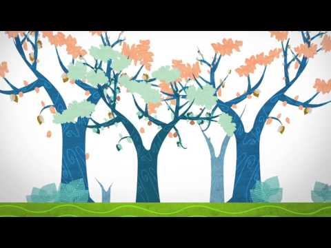 Life-course approach - YouTube