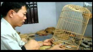 preview picture of video 'lang nghe long chim Canh Hoach.avi'