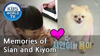 Memories of Sian and Kiyom [The Return of Superman | 슈퍼맨이 돌아왔다 / Editor's Picks]