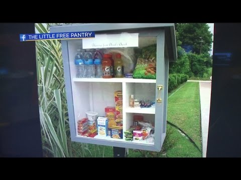 Little Food Pantry Project Image