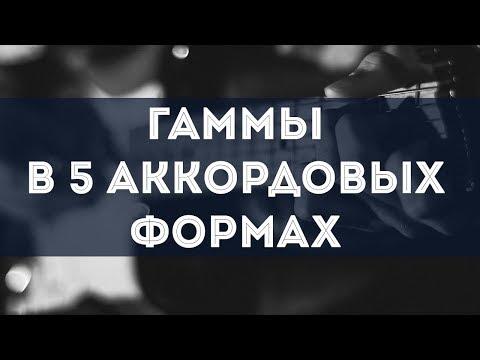 Гаммы в 5 аккордовых формах
