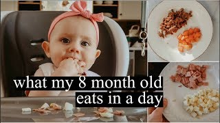 What My 8 Month Old Eats In A Day | Baby Led Weaning & Breastfeeding || LoeppkysLife