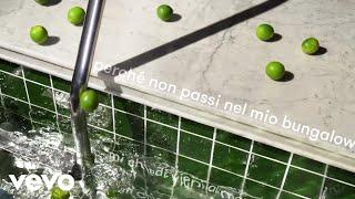 Crucchi Gang, Francesco Wilking - Il mio bungalow (Lyric Video)