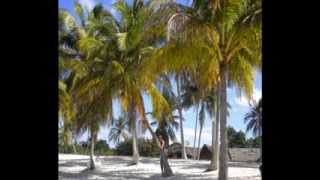 preview picture of video 'LUNA DE MIEL-HONEYMOON EN CUBA 11-2009.wmv'
