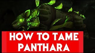 🔝 [Legion 7.3] How to Tame the Panthara on Argus!