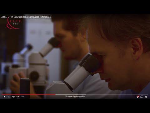 A humán papilloma kezelése férfiaknál