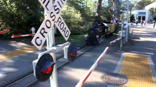SF Zoo Steam Train