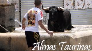 preview picture of video 'encierros del pilón Yunquera d Henares 1-7-2012.'