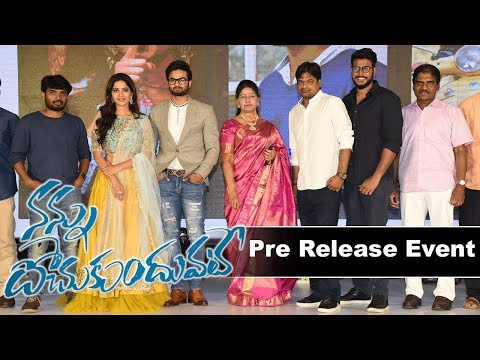 nannu-dochukundhuvate-movie-pre-release-event