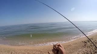 Морская рыбалка в крыму форум