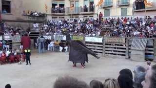 preview picture of video 'Festival cómico taurino Cardona 2013 actuación de los Geganters i Grallers'
