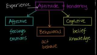 Attitude - Overview
