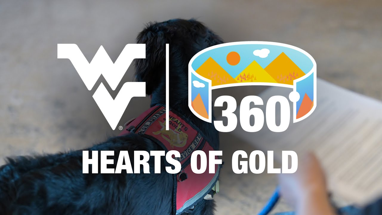 Hearts of Gold 360