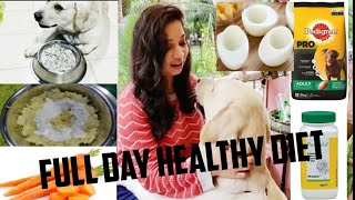 #labradordiet #dog LABRADOR FULL DAY DIET | foods you can give to your dog |food you should avoid |