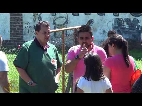 Ação Social no Bairro da Palmeira com Associação dos Moradores de Palmeira