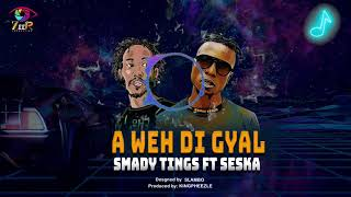 Smady Tings (MBOGI GENJE) Feat. Seska (ETHIC ENTERTAINMENT) - AWEH DI GYAL (Official Visualizer)