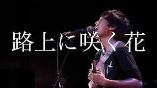 【路上に咲く花 / HACHI BAND ver.】 ウクレレ ロックの画像