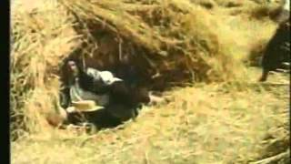 Жито, мати, жито - Хор Верьовки