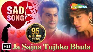 Ja Sajna Tujhko Bhula | Raja Songs | Madhuri Dixit | Sanjay