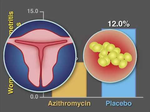 Acoela vs platyhelminthes