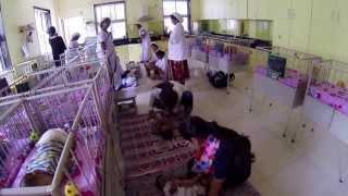 Shreevatsa orphanage