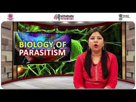 Megtisztítja a paraziták testét a gyógynövényektől