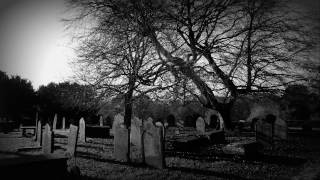 Army of Lovers - Supernatural (Album Version)