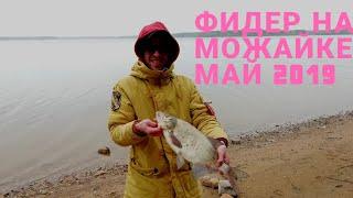 Рыбалка на можайском водохранилище 2019 отчёт