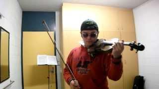 La Vie En Rose( Édith Piaf-violin cover) Vince Kwansky