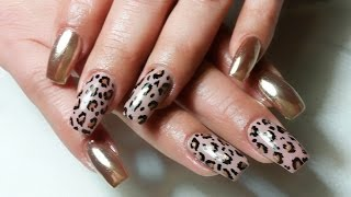 Uñas Leopardo Free Video Search Site Findclip
